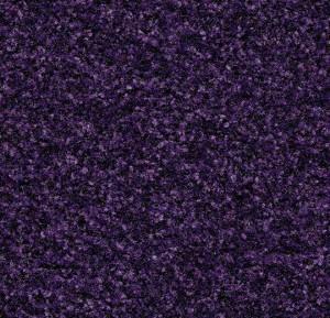 brush_uj_5709_royal_purple